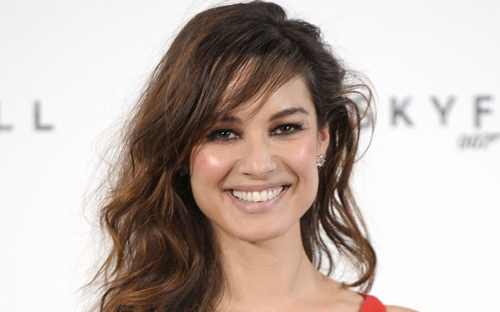 Berenice Marlohe Bio, Wiki, Age, Height, Body Measurements, Net Worth, Movies, TV Shows, Parents, Husband, Married